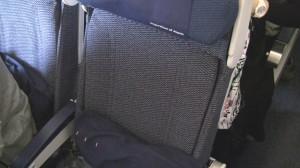 ANA 777-300ER Economy Seat